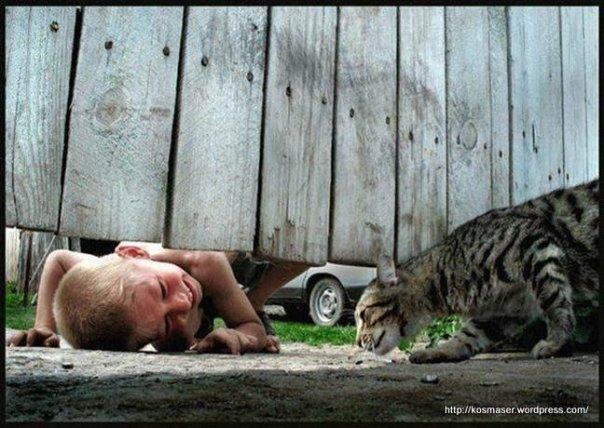 Scenes-touchantes-et-insolites-entre-animaux-et-humains1_008