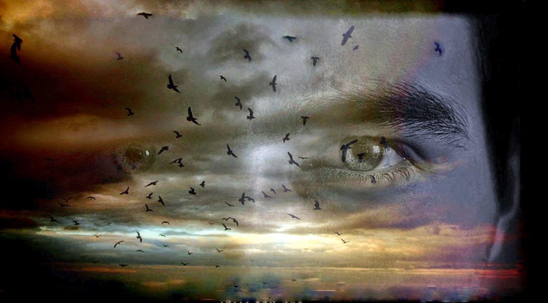 Αποτέλεσμα εικόνας για α 7 δις άνθρώπων που κατοικούμε σήμερα τον πλανήτη..)